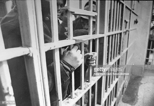 Prisoners in detention cells at Bronx Criminal Court