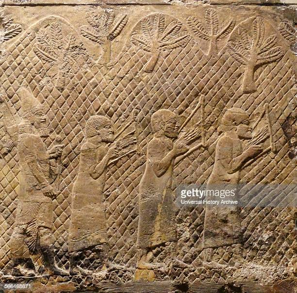 Prisoners playing lyres Assyrian about 700692 BC From Nineveh SouthWest Palace Musicians are marched under escort through mountainous country Their...