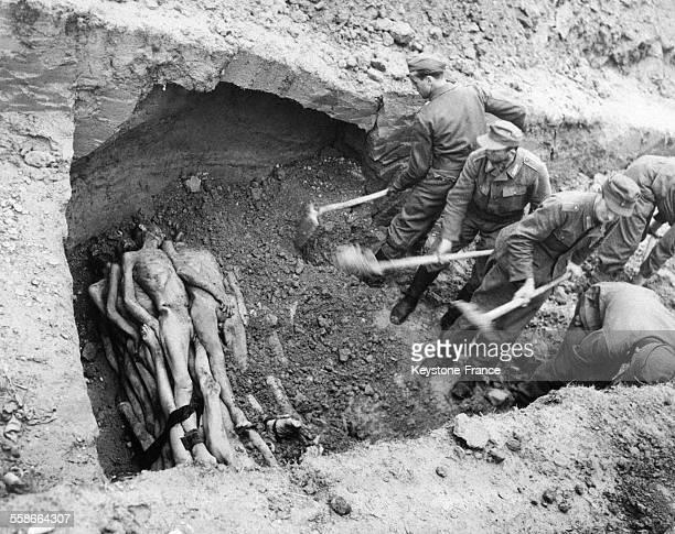 Prisonniers allemands enterrant des corps de Juifs deportes morts de faim du tiphus ou d'une piqûre dans une fosse qui doit en contenir 1000 dans le...