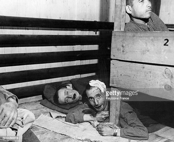 Prisonniers visages tuméfiés édentés et trop faibles pour se mouvoir tout juste libérés le 7 mai 1945 dans le camp de concentration de Mauthausen en...