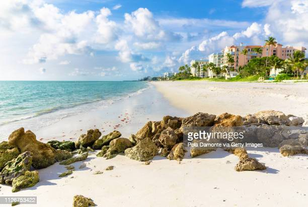 pristine and idyllic beach at sunset in a bright day, naples, florida, usa - florida usa stock-fotos und bilder
