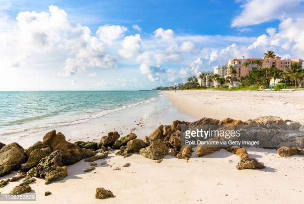 pristine and idyllic beach at sunset in a bright day, naples, florida, usa - naples florida fotografías e imágenes de stock