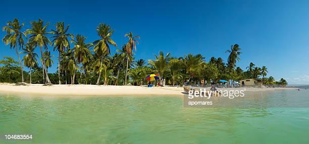 Unberührten tropischen türkisfarbenen Wasser Insel Strand mit Kokospalmen.
