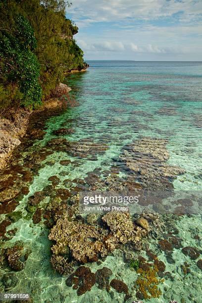 Pristine tropical water. New Caledonia.