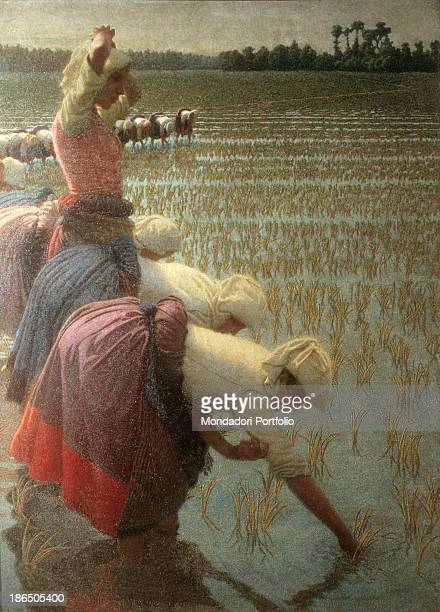 Private collection Whole artwork view On the left the 'mondine' rice pickers at work in a rice field