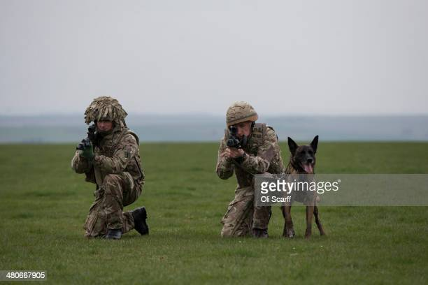 Private Terry Gidzinski and his military working dog Cheyenne put on a display as the Army showcases its future specialist capabilities under the...