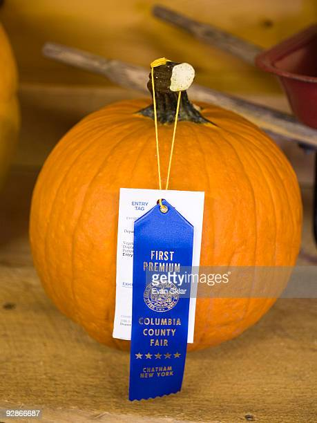 prize winning pumpkin at fair - chatham new york state stock pictures, royalty-free photos & images