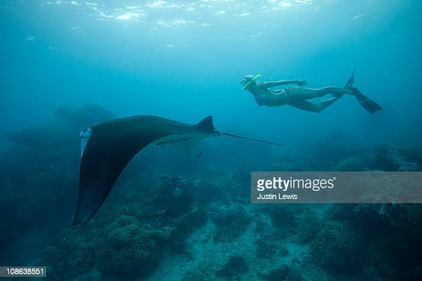 Pro surfer free diving with a Manta Ray.