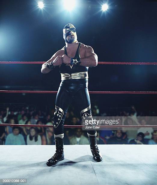 Pro wrestler wearing mask, standing in ring