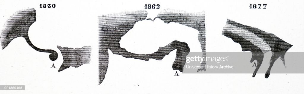 Probable variations in the features of the Gulf of Kaiser. : News Photo