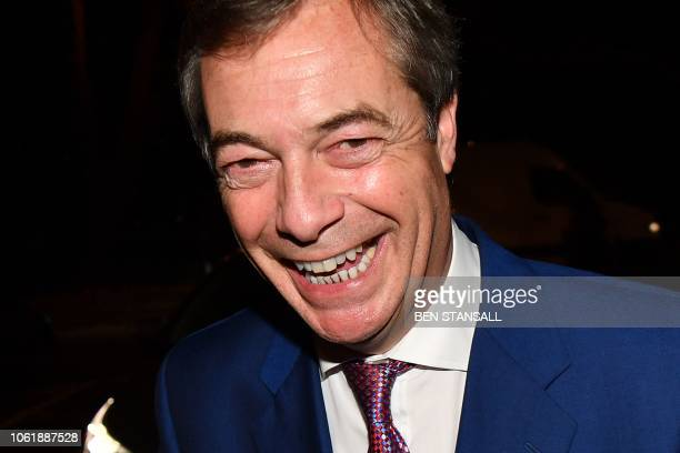 ProBrexit Member of the European Parliament Nigel Farage ViceChairman of the proBrexit organization Leave Means Leave and former leader of the UK...