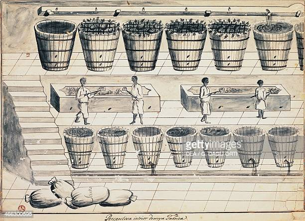 Processing cycle for extracting sugar from beet watercolour Portugal 19th century