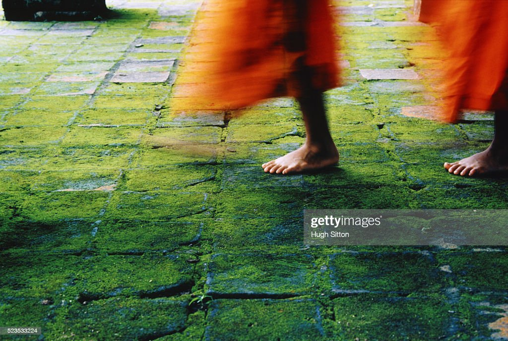 Procession of Novice Buddhist Monks : Stock Photo