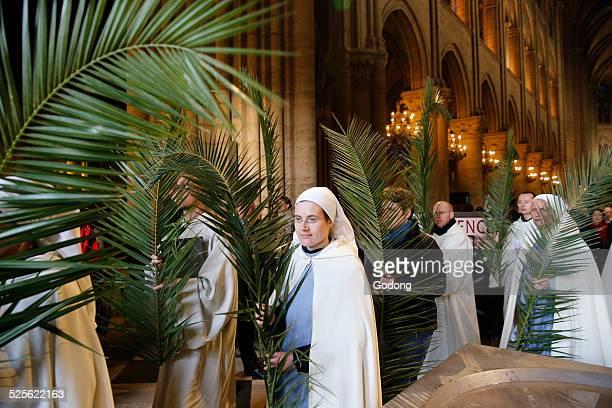 procession - domingo de ramos imagens e fotografias de stock