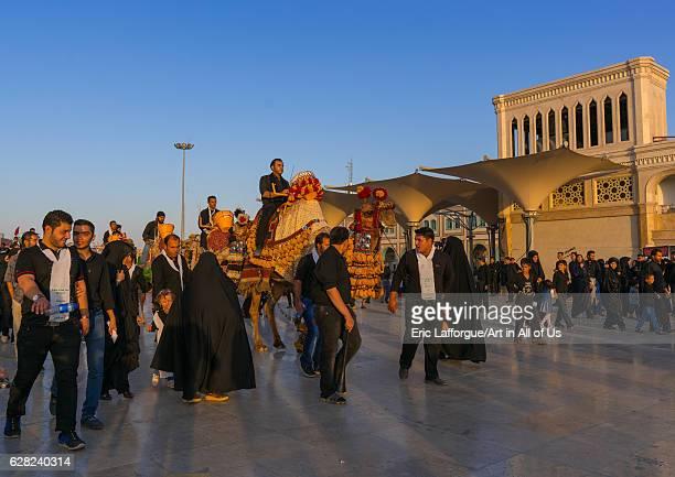 Procession with camels during Muharram celebrations in Fatima al-Masumeh shrine, Central County, Qom, Iran on October 8, 2016 in Qom, Iran.
