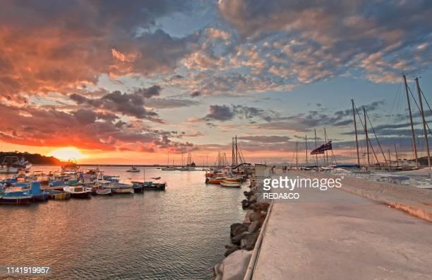 Procida harbour Procida Campania Italy Europe
