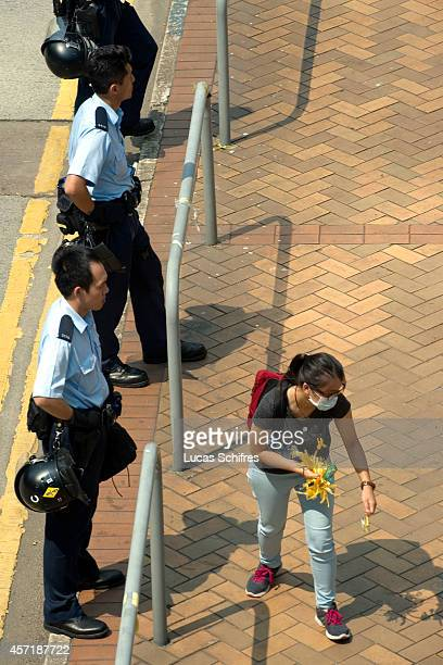 Pro-democracy 'Occupy Central' female protester collect and dispose of yellow ribbons, symbols of the 'Umbrella revolution', to clean up after their...