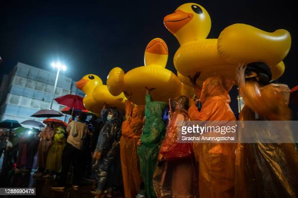 Pro-democracy protesters use inflatable yellow ducks to shield themselves from the rain during the protest at Hat Yai Clock Tower on November 30,...