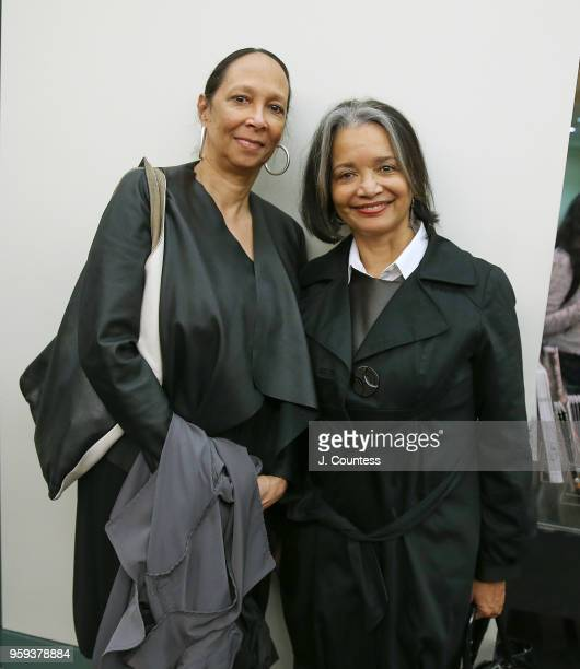 Producer/director Cheryl Hill and President CEO of the Apollo Theater Jonelle Procope attends the opening night of the 25th African Film Festival at...