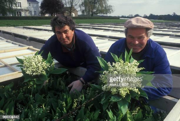 Producteurs de muguet à Nantes, le 25 avril 1987, en Loire-Atlantique, France.