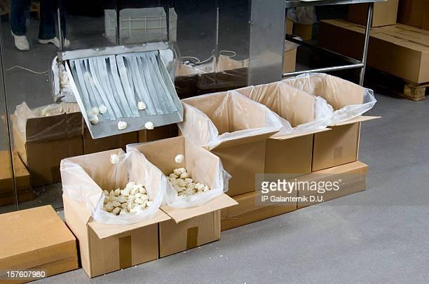 Produktion in einem food factory. Ravioli Vorbereitung. Verpackung