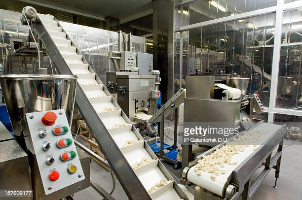 Production line in a food factory. Ravioli preparation