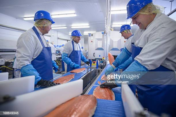 Production line of workers filleting salmon in food factory