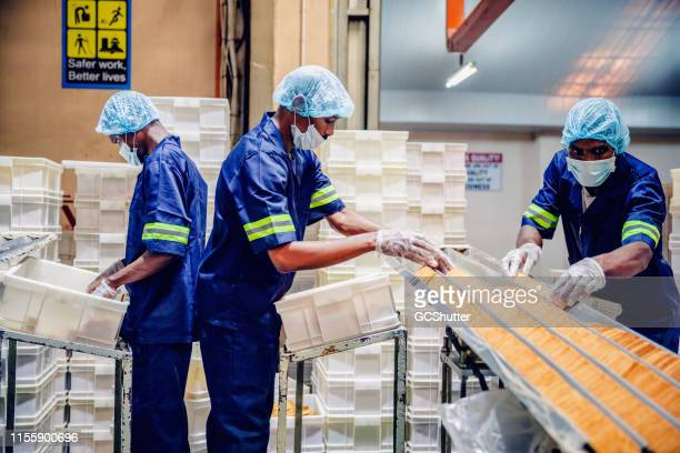 Production Line Worker at a Biscuit Factory in Africa
