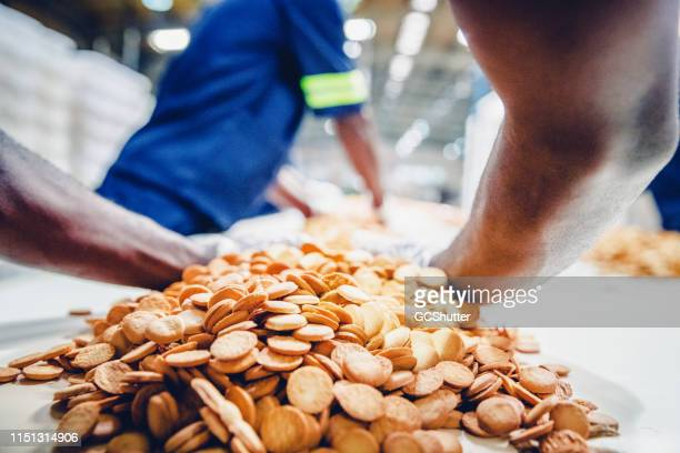 Production Line Worker Collecting the Freshly Baked Biscuits