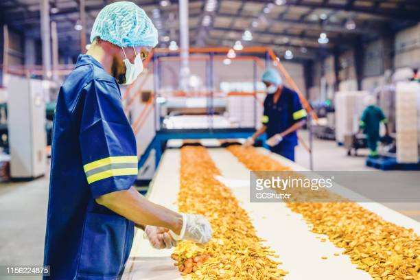 Production Line Workers Checking the Quality of Freshly Baked Biscuit at a Factory