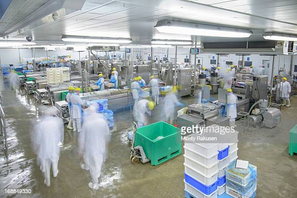 Production lines in busy food factory, blurred motion
