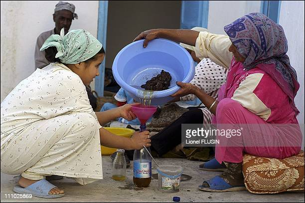Production of argan oil in the Essaouira area of Morocco The argan almond paste is mixed with water then pressed to obtain oil in Essaouira on...
