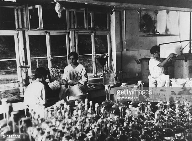 production of culture mediums for the serum extraction in the laboratory 1933 Photographer Neudin