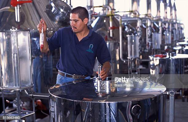 Production of tequila, distillation process at Tequila Herradura Industry - tequila is produced by removing the heart of the blue agave plant, this...