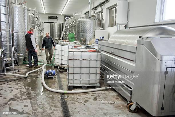 Produktion Wein in einem Weingut