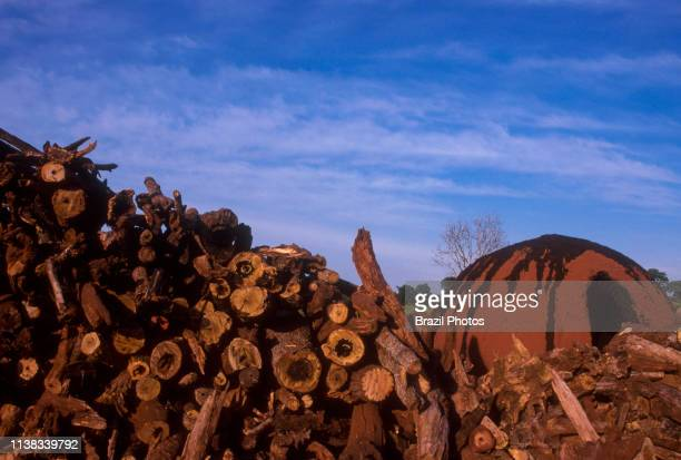Production of wood charcoal to be used as fuel to produce pig iron - the intermediate product of smelting iron ore increases Cerrado biome...