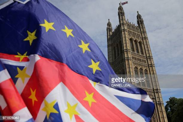 ProEU demonstrators wave an mixed EU and Union flag as they protest against Brexit outside of the Houses of Parliament in central London on June 11...