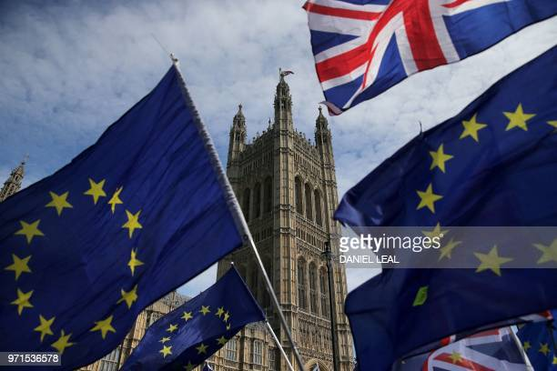 ProEU demonstrators wave Eureopean Union and Union flags during a protest against Brexit outside of the Houses of Parliament in central London on...