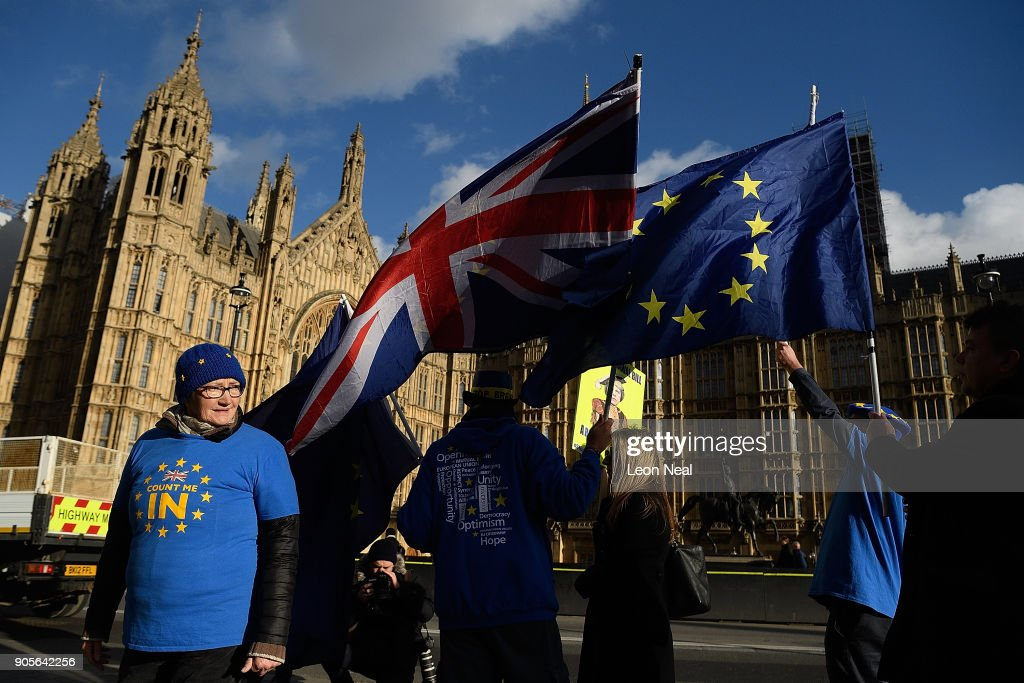 Pro-Europe Protesters Wave EU Flags Outside Parliament