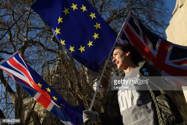 ProEuropean demonstrators wave EU flags during a protest at the Houses of Parliament on January 16 2018 in London England