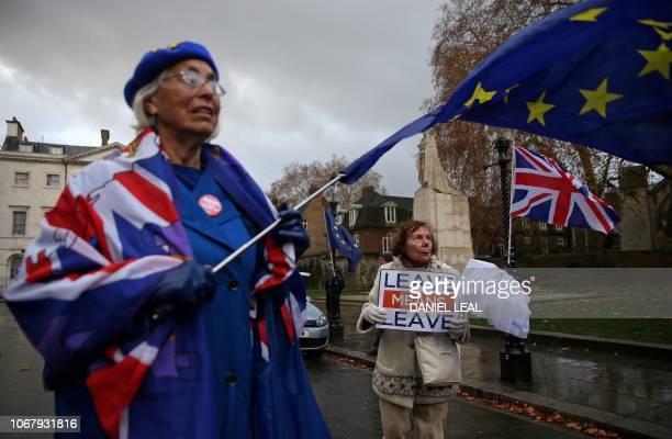 A proEuropean Union antiBrexit demonstrator waves an EU flag as she stands with an antiEU pro Brexit demonstrator as they protest opposite the Houses...