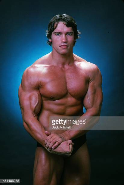 Arnold schwarzenegger pictures and photos getty images professional bodybuilder arnold schwarzenegger posing at the top of his form in october 1976 malvernweather Images