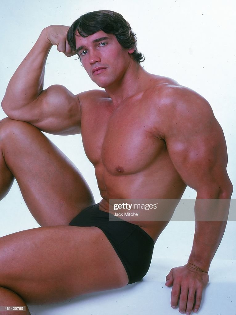 Arnold Schwarzenegger : News Photo