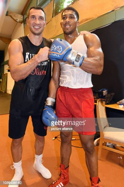 Professional boxer Wladimir Klitschko and Anthony Joshua pose during a traning session in Going Austria 19 August 2014 IBF IBO WBOand WBIworld...
