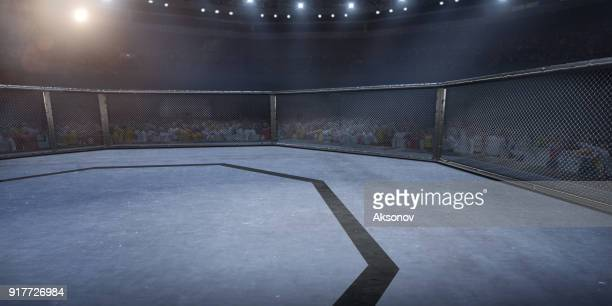 Professional boxing ring in 3D
