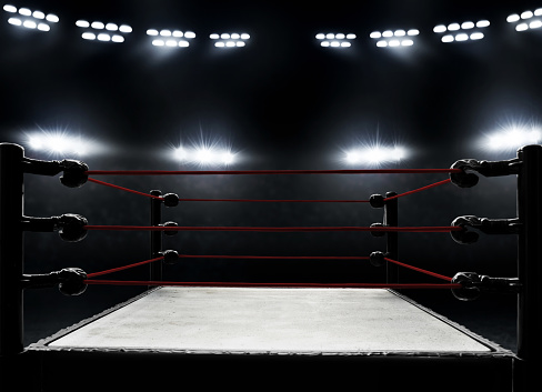 Professional boxing ring 1005886868