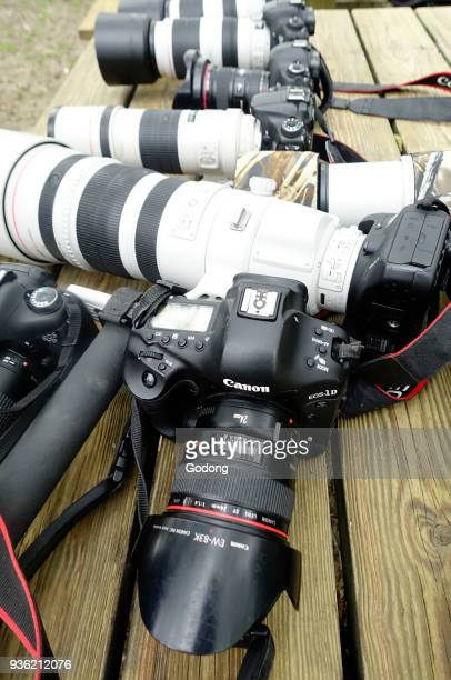 Professional digital cameras and lenses