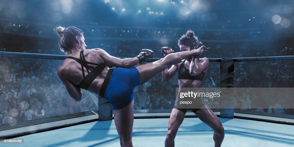 Professional Female Mixed Martial Arts Fighters Fighting In Octagon : Stock Photo