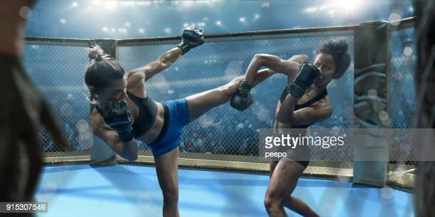 professional female mixed martial arts fighters fighting in octagon - mixed martial arts stock pictures, royalty-free photos & images