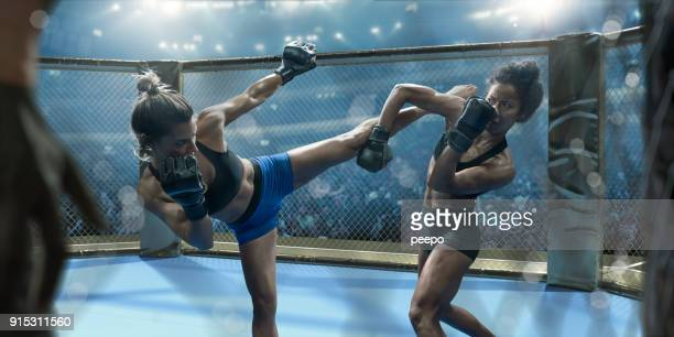 professional female mixed martial arts fighters fighting in octagon - mma stock pictures, royalty-free photos & images